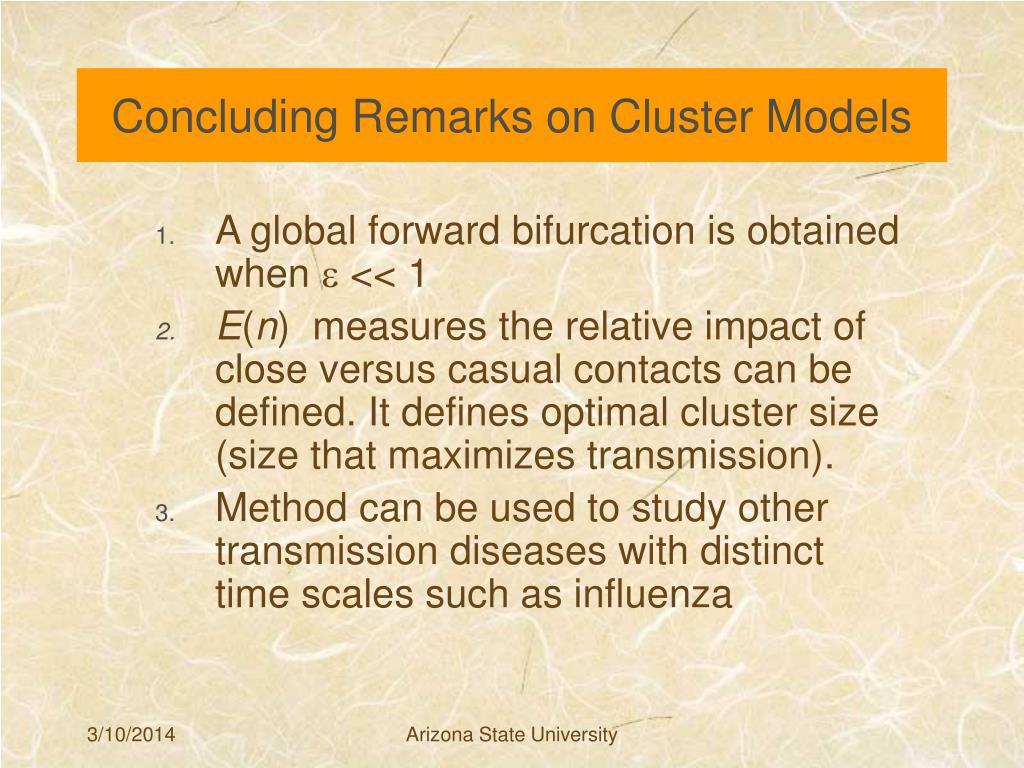 Concluding Remarks on Cluster Models