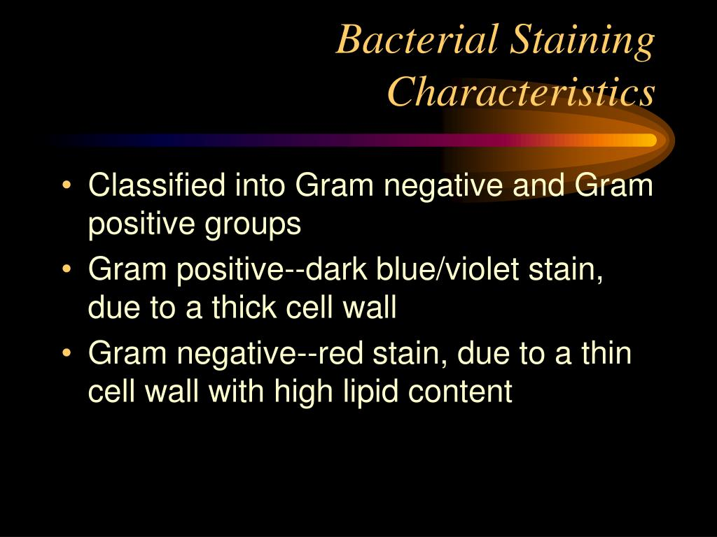 Bacterial Staining Characteristics