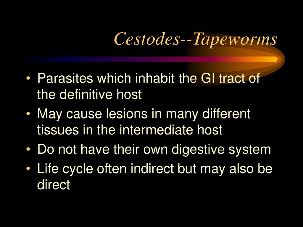 Cestodes--Tapeworms