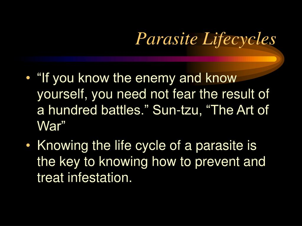 Parasite Lifecycles
