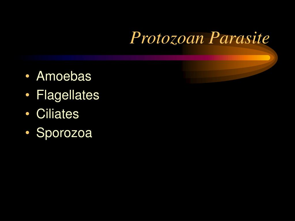 Protozoan Parasite
