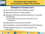 strategies for success cont