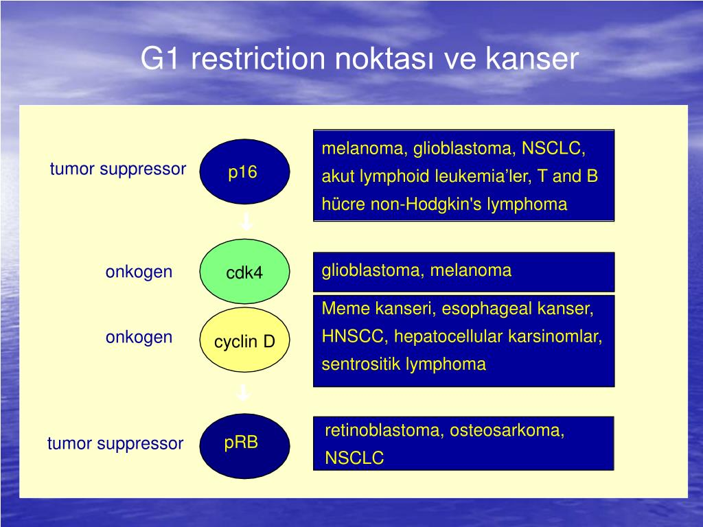 G1 restriction
