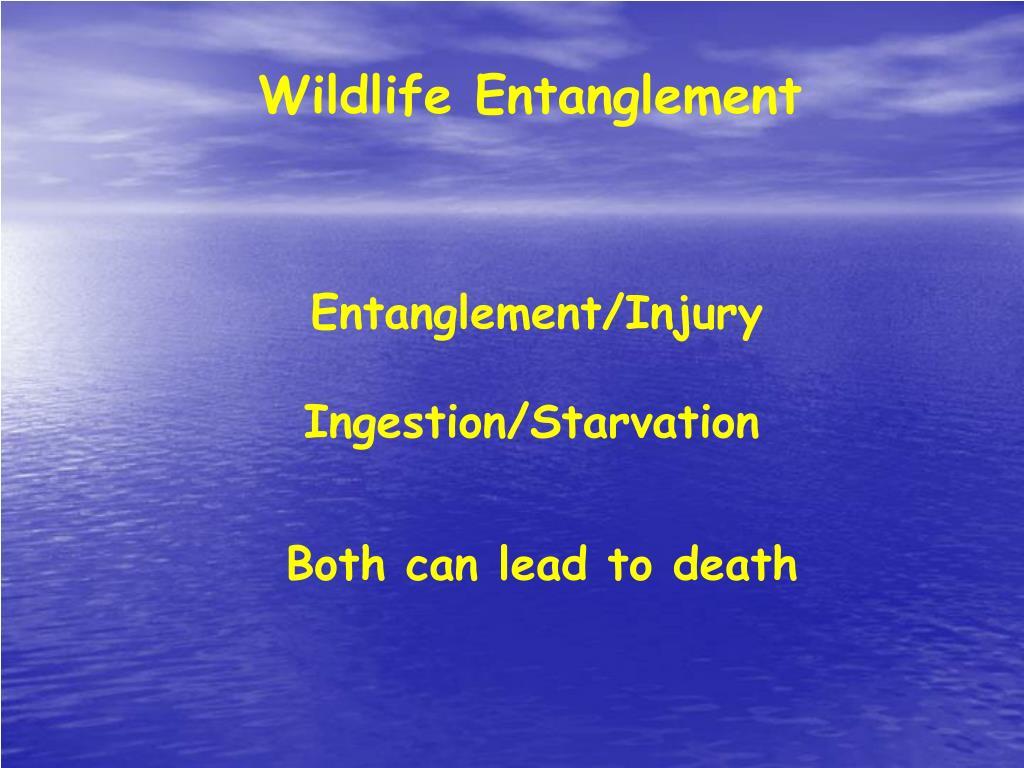 Wildlife Entanglement