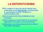 la enterotoxemia24