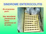 sindrome enterocolitis29