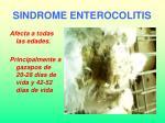 sindrome enterocolitis31
