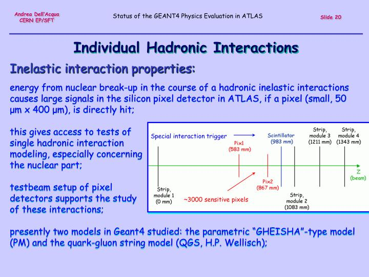 Individual Hadronic Interactions