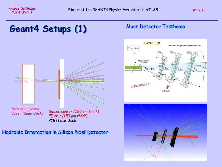 Muon Detector Testbeam