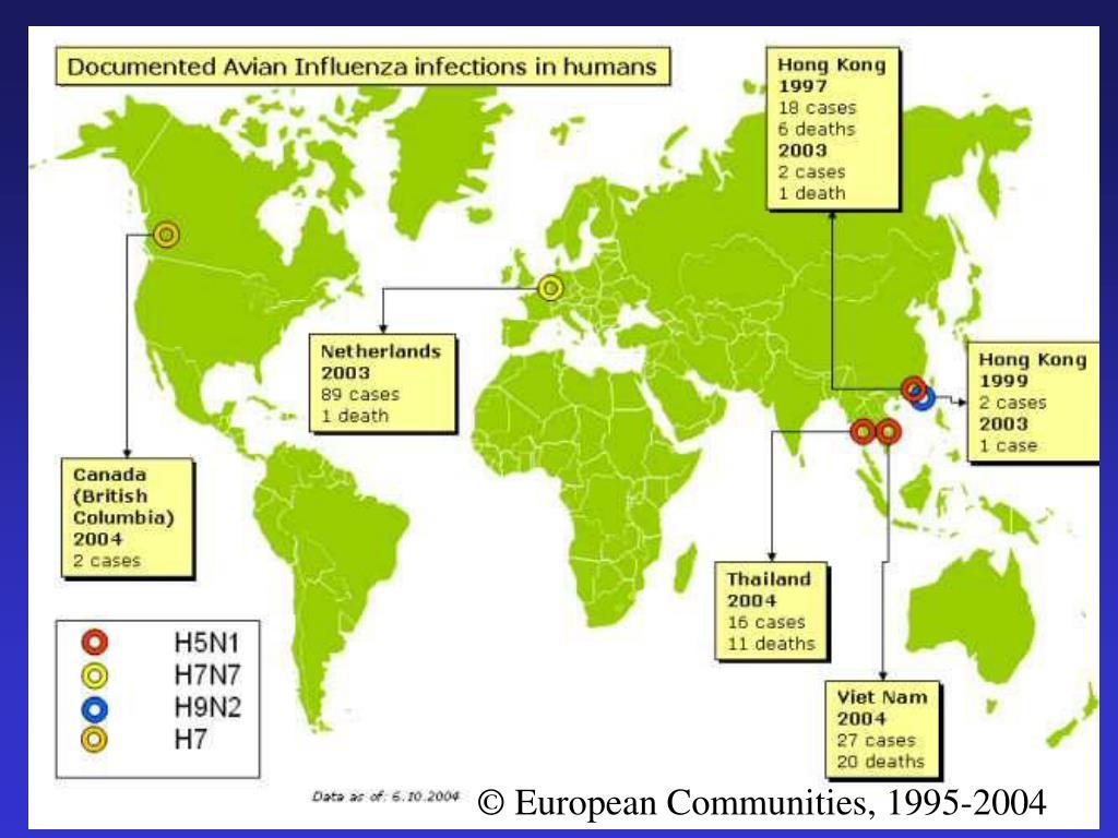 © European Communities, 1995-2004