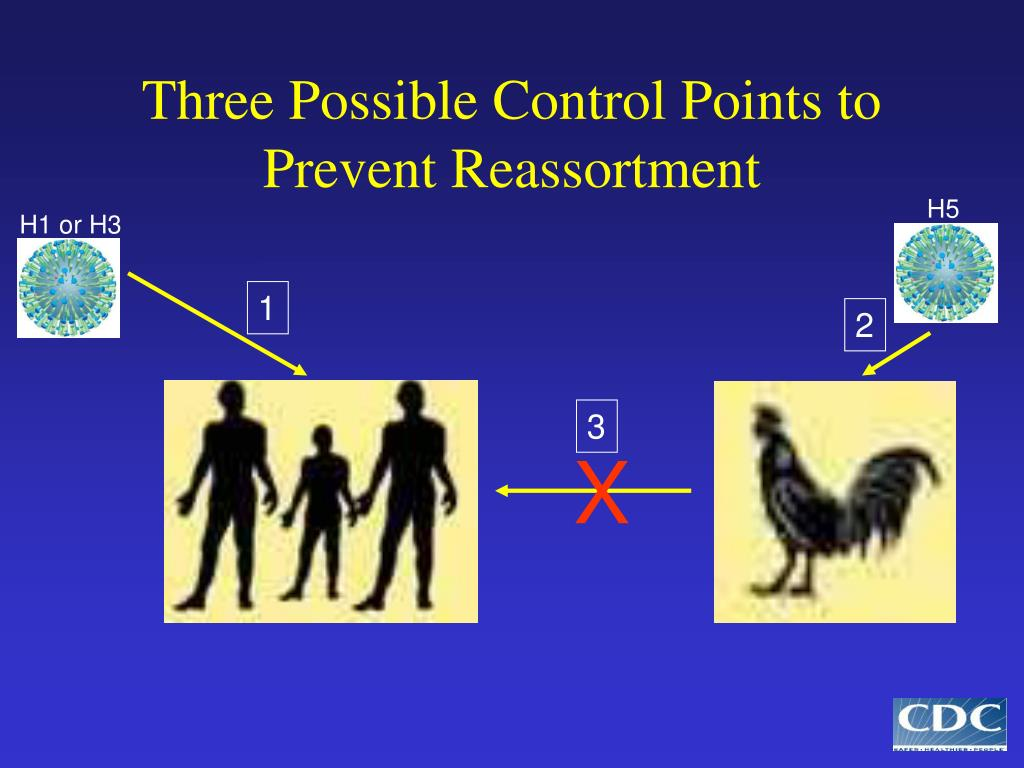 Three Possible Control Points to Prevent Reassortment