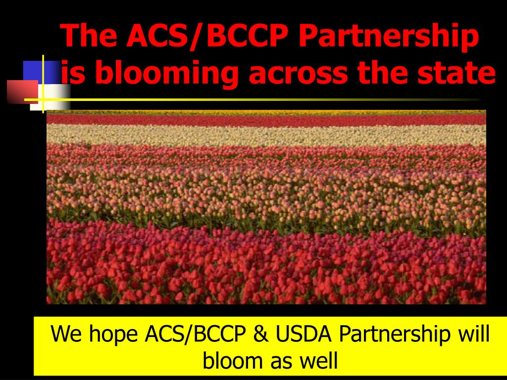 The ACS/BCCP Partnership is blooming across the state