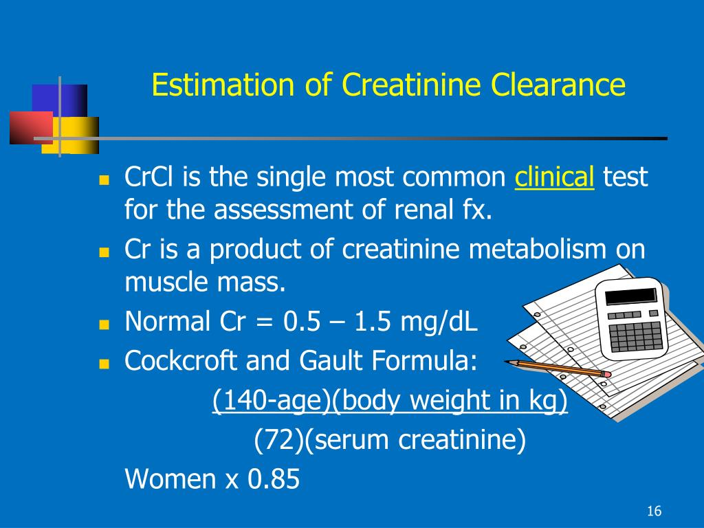 Estimation of Creatinine Clearance