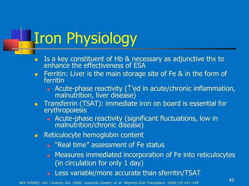 Iron Physiology
