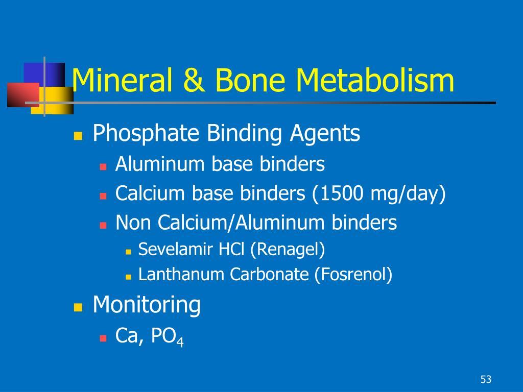 Mineral & Bone Metabolism
