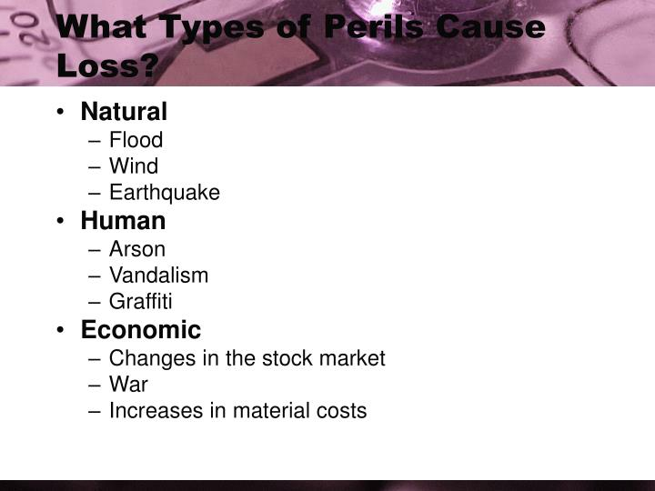 What Types of Perils Cause Loss?
