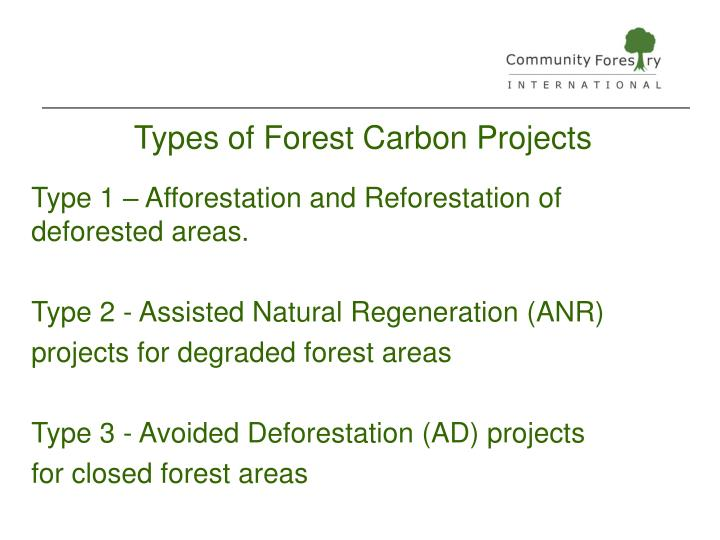 Types of Forest Carbon Projects