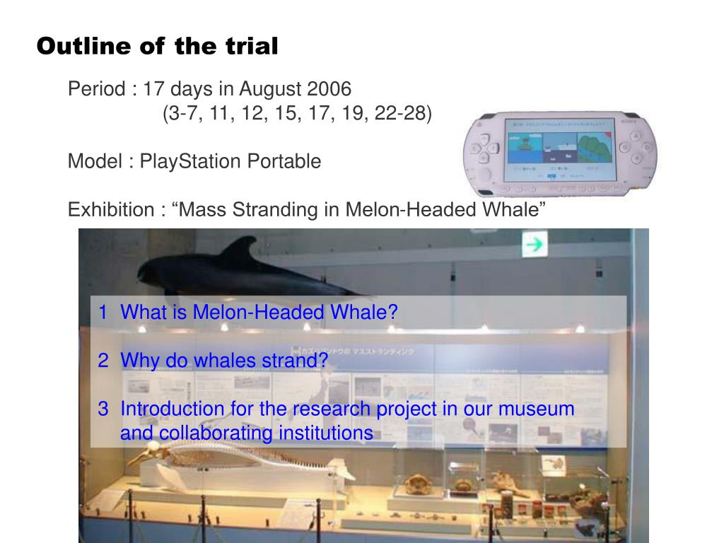 Outline of the trial