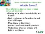 what is bread