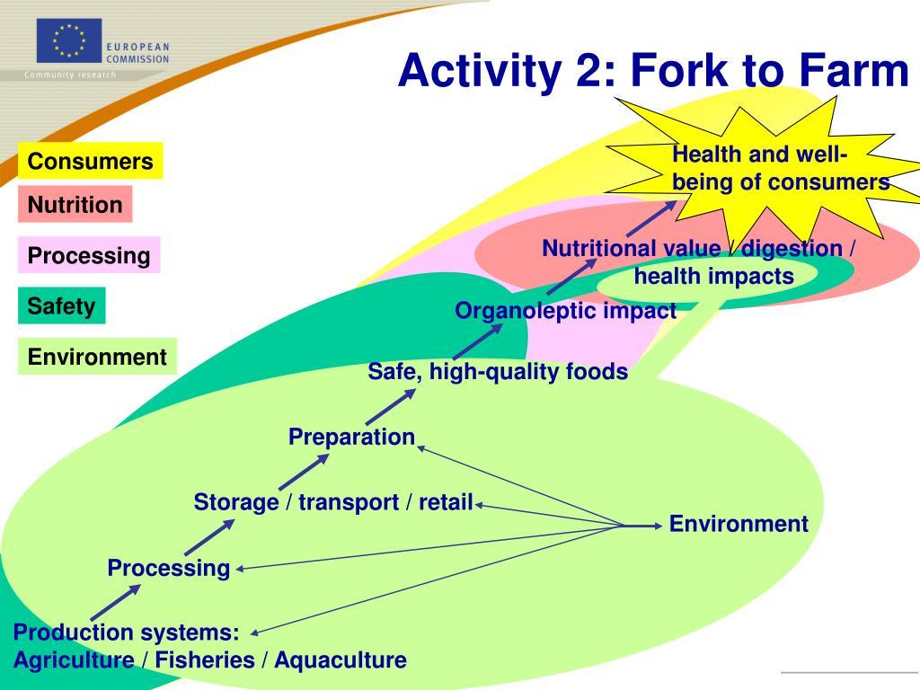 Activity 2: Fork to Farm