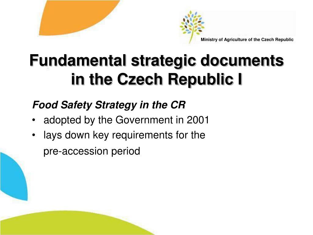 Fundamental strategic documents in the Czech Republic I