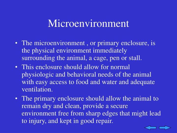 Microenvironment