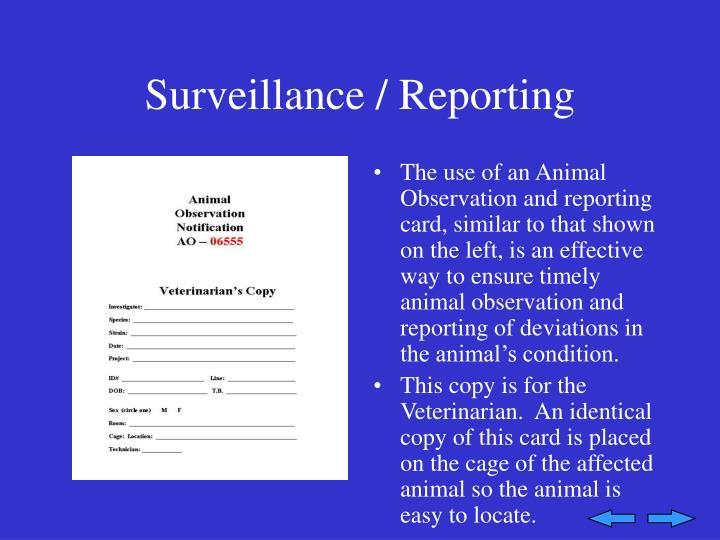 Surveillance / Reporting