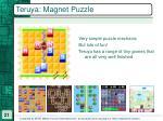 teruya magnet puzzle