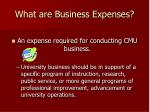 what are business expenses