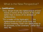 what is the new perspective11