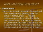 what is the new perspective19