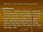 what is the new perspective23