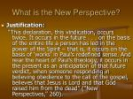 what is the new perspective24