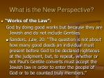 what is the new perspective26