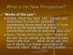 what is the new perspective27
