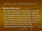 what is the new perspective28