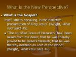 what is the new perspective31