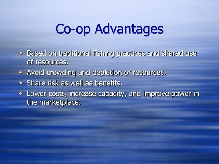 Co-op Advantages
