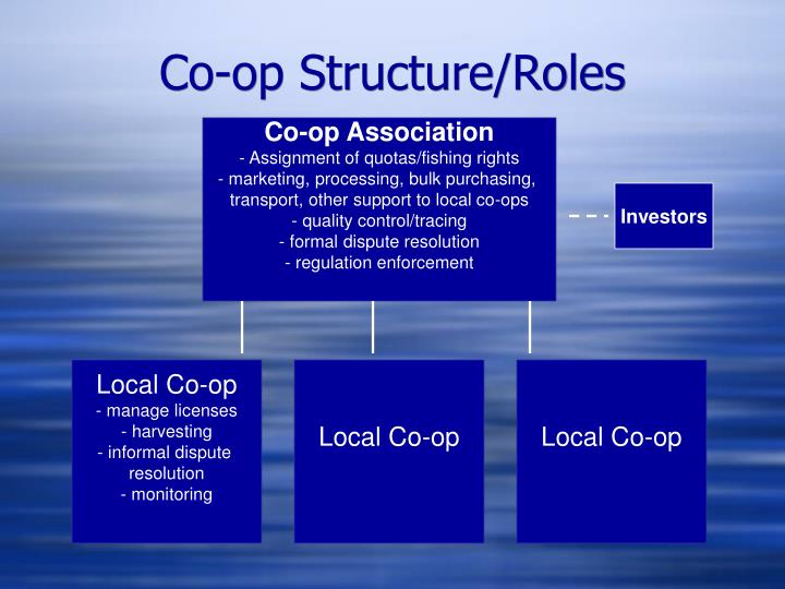 Co-op Structure/Roles