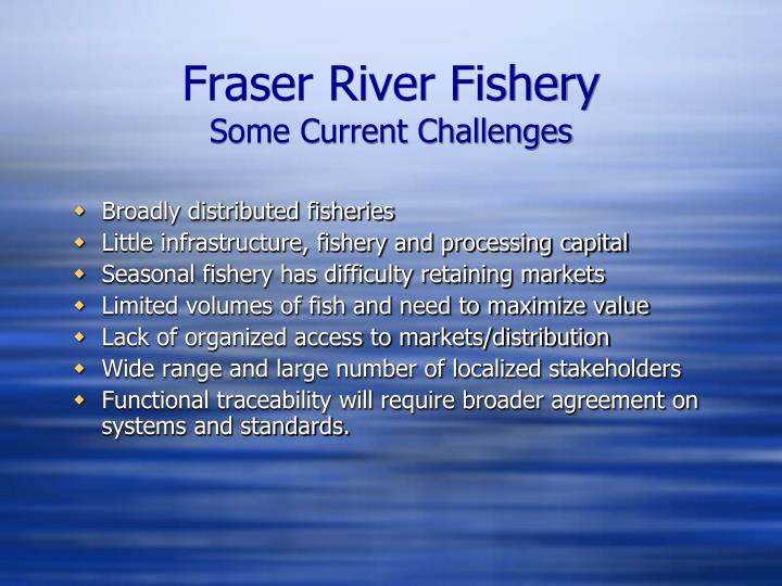 Fraser river fishery some current challenges