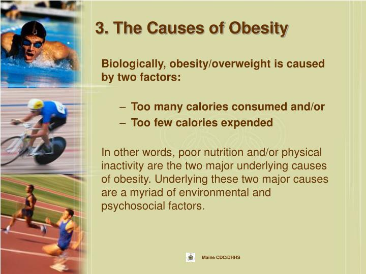 3. The Causes of Obesity