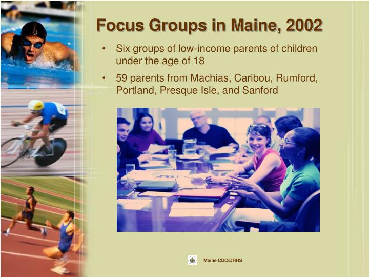 Focus Groups in Maine, 2002