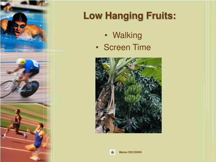 Low Hanging Fruits: