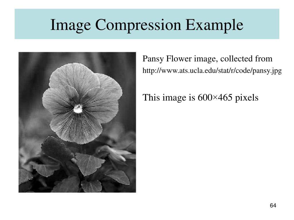 Image Compression Example