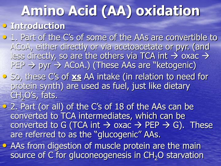 Amino Acid (AA) oxidation