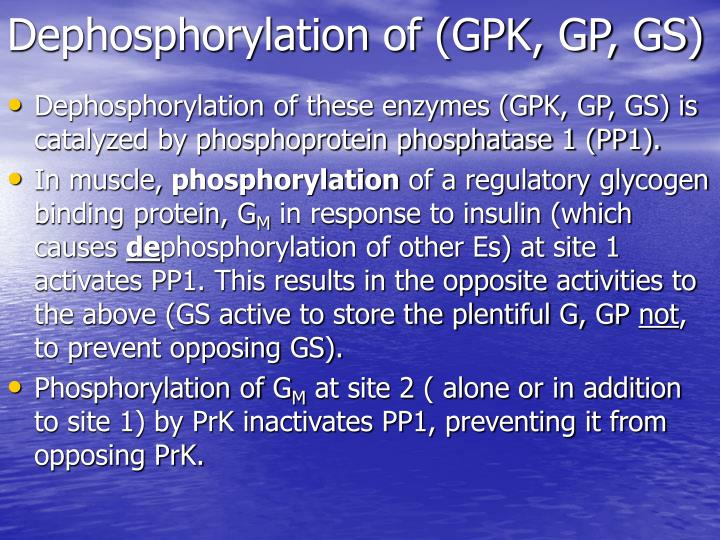 Dephosphorylation of (GPK, GP, GS)