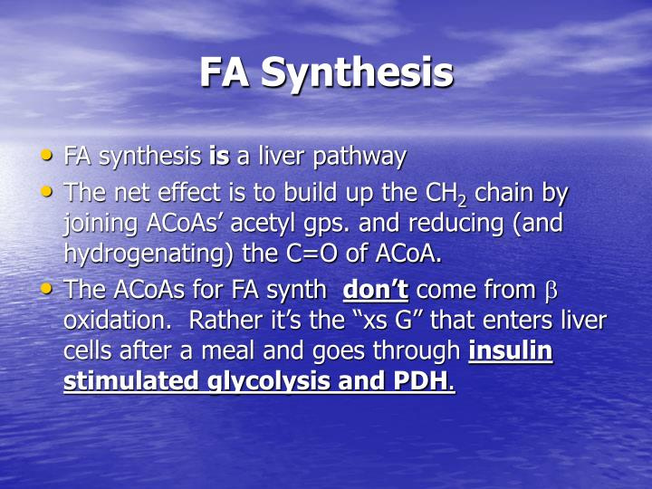 FA Synthesis