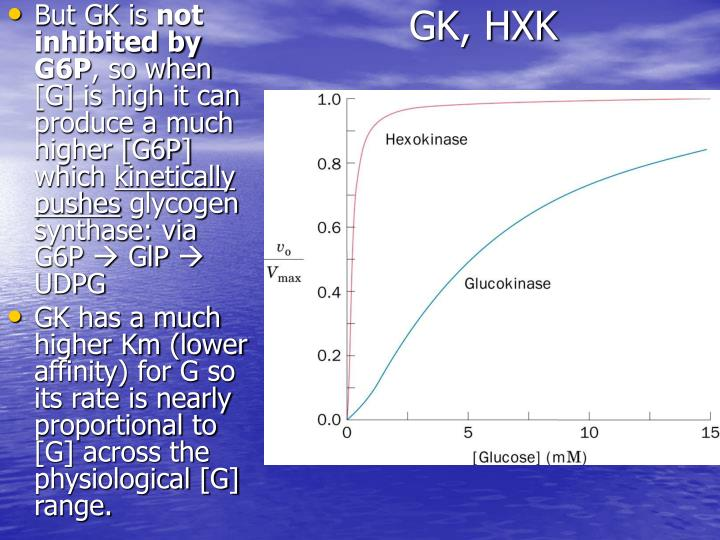 GK, HXK