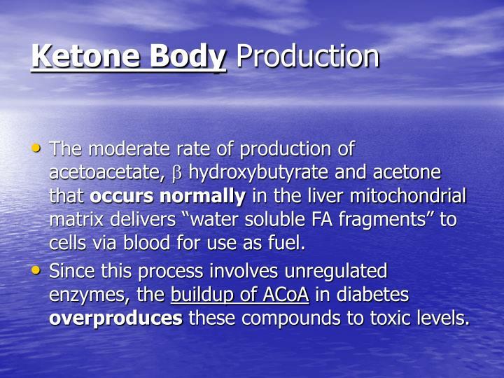 Ketone Body