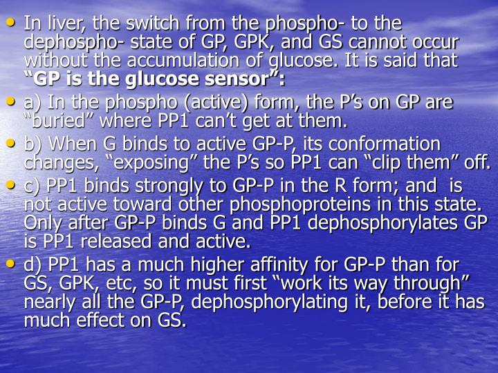 In liver, the switch from the phospho- to the dephospho- state of GP, GPK, and GS cannot occur without the accumulation of glucose. It is said that